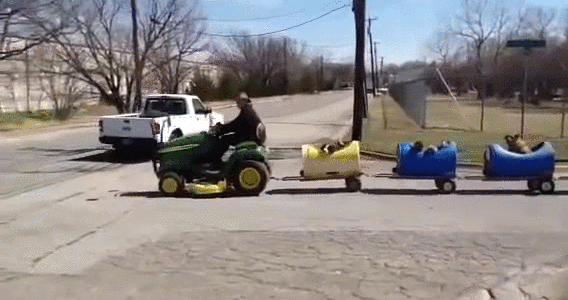 Elderly man builds train for adopted stray dogs. Texas man taking his adopted stray dogs for a ride on a mini train he built himself.